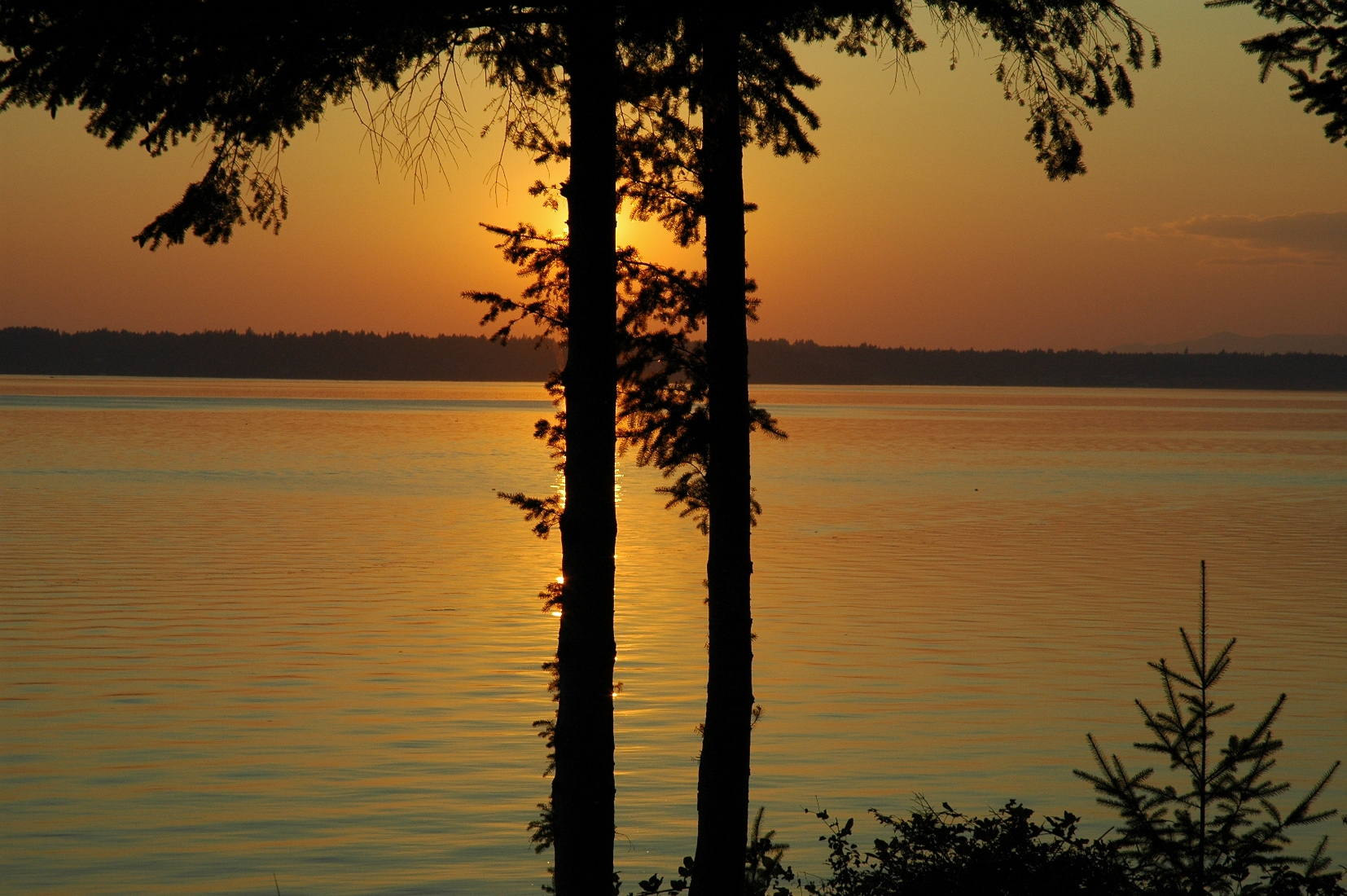 sunset small puget 002