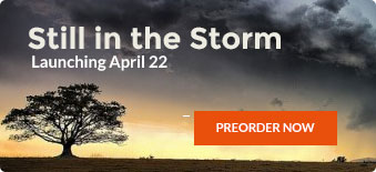 Still in the Storm book cover (1)